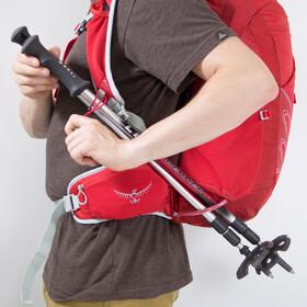Osprey Talon 33 Backpack Herre martian red
